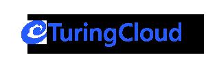 turingcloud.com